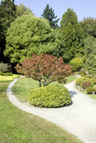 Picturesque Japanese garden. Interesting garden paths with lush greenery Stock Photo