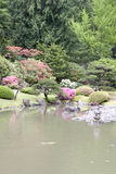 Picturesque Japanese Garden. Beautiful flowers, trees and pond in Seattle Japanese garden Royalty Free Stock Photo