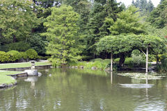 Picturesque Japanese garden with pond Royalty Free Stock Photos