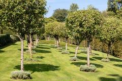 The picturesque Jardins du Manoir d Eyrignac in Dordogne. France stock image