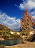 Picturesque lake in autumn. Scenic view of picturesque lake with autumnal forest in background stock photography