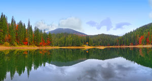 Picturesque lake in the autumn forest Stock Photos