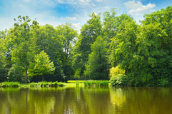 Picturesque lake, forest on the banks and sky Stock Photos