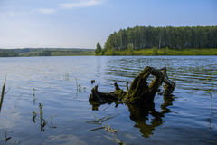 The picturesque lake. Nizhny Novgorod region, Russia Royalty Free Stock Photo