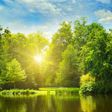 Picturesque lake, summer forest on the banks and the sunrise Royalty Free Stock Photography