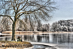 Picturesque lake in winter. HDR view of picturesque lake in countryside with tree in foreground, winter scene Stock Images