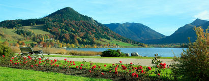 Picturesque lakeside promenade schliersee. Picturesque lakeside promenade, lake schliersee, with benches and rose flowerbeds stock image