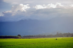 Picturesque landscape in asia Royalty Free Stock Images