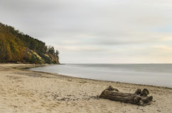 Picturesque landscape of cliff in gdynia orlowo on baltic sea in Poland Royalty Free Stock Photography