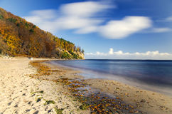 Picturesque landscape of cliff in gdynia orlowo on baltic sea in Poland Royalty Free Stock Photos