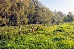 Picturesque landscape of a along the Dutch river Donge in N. Oord Brabant with a long fence diagonally in the picture. It is early in the morning of a sunny day stock photos