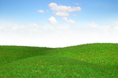 Picturesque landscape with green field. Stock Photo