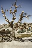 Picturesque landscape with jugs on a tree and old wagon full of clay pots. Cappadocia in Turkey Stock Photo