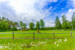 Picturesque landscape in Kristianstad, Sweden Stock Photography