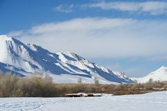 Picturesque landscape of Mongolia Stock Photography