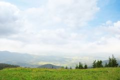 Picturesque landscape with mountain meadow. And forest royalty free stock image