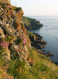 Picturesque landscape of mullion cove, cornwall, south england Stock Images