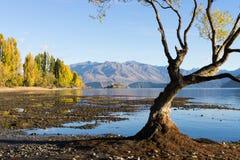 Picturesque landscape Stock Photos