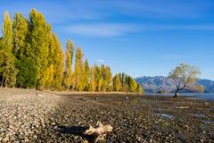 Picturesque landscape Stock Images