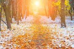 Picturesque landscape of the sun above the road. The path in the forest covered with the first snow. With blurred and bright sunli stock images