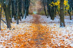 Picturesque landscape of the sun above the road. The path in the forest covered with the first snow. With blurred and bright sunli Stock Photo