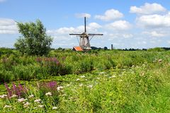 Picturesque landscape with windmills. Kinderdijk Royalty Free Stock Photos