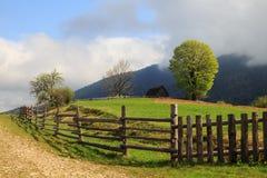 The picturesque little farm in the Carpathian Mountains, Mizhhir stock image