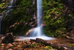 Picturesque little waterfall Stock Photos