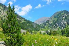 Picturesque mountain landscape,meadow, hiking trail and sky. Royalty Free Stock Photo
