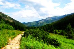 Picturesque mountain trail with beautiful scenery Royalty Free Stock Photo