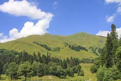 Picturesque natural sunny landscape of green alpine meadows. Panorama of mountain and the forest at foot of blue sky and clouds royalty free stock photo