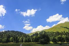 Picturesque natural sunny landscape of green alpine meadows. Panorama of mountain and the forest at foot of blue sky and clouds royalty free stock photography