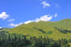 Picturesque natural sunny landscape of green alpine meadows. Panorama of mountain and the forest at foot of blue sky and clouds royalty free stock images