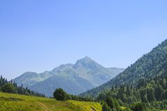 Picturesque natural sunny landscape of green alpine meadows. Panorama of mountain and the forest at foot of blue sky and clouds stock photography