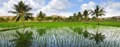 Picturesque nature landscape. Hampi, India Stock Photo