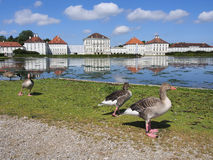 Picturesque nature landscape with Nymphenburg Palace royalty free stock photo