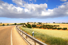 Picturesque nature rural landscape with fields. Stock Photo