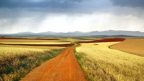 Picturesque nature rural landscape with fields. Royalty Free Stock Photo