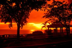 Picturesque ocean sunset. Scenic view of picturesque orange sunset over sea with silhouetted road and trees in foreground Stock Photo