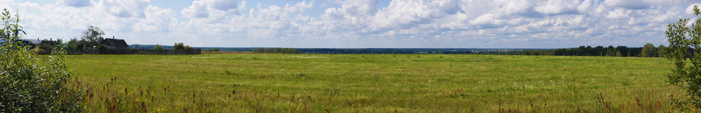 Picturesque panoramic view of the green grassy sown meadow at the woodside under the blue sky. Moscow region, Russia. Beautiful panoramic view of the green Stock Photos