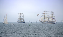 Picturesque parade of sails Stock Photography