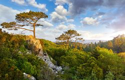 Picturesque park at knolls in Sintra Portugal Stock Photo