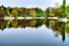Picturesque park landscape Royalty Free Stock Images