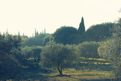 Picturesque park of Lourmarin. Spain. Picturesque park of Lourmarin. Provence-Alpes-Cote d`Azur. France Stock Image