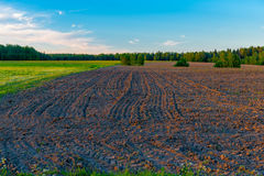 Picturesque plowed field at sunset in the spring Royalty Free Stock Image