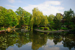 Picturesque pond in the Japanese park Royalty Free Stock Photo