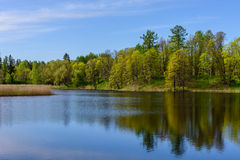 Picturesque pond Stock Photography