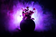 Picturesque purple spring flowers in glass vase standing in a row on a dark background with stars with light and fog. Flower conce. Pt. Dark decoration Royalty Free Stock Images