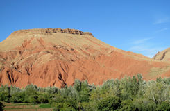 Picturesque red mountain and green froest at the bottom Royalty Free Stock Photos