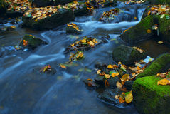 Picturesque river in Autumn Royalty Free Stock Image